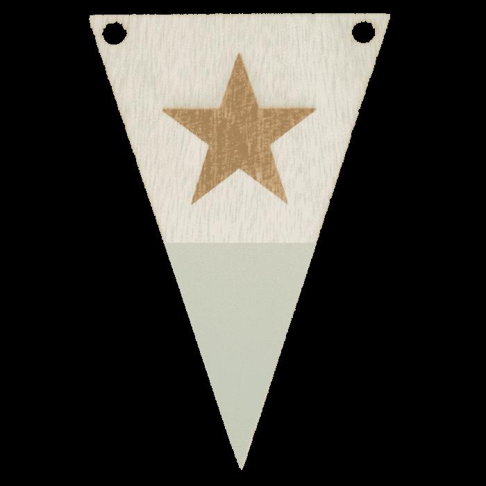 Stervlag met punt in kleur gegraveerd